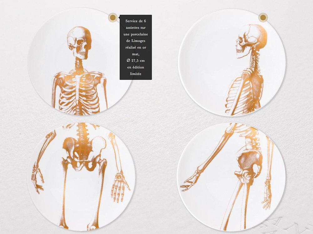 LIMBUS | Agence Design et Web - Corps humain: squelette