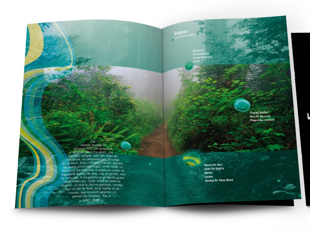 LIMBUS | Agence Design et Web - Écosystème