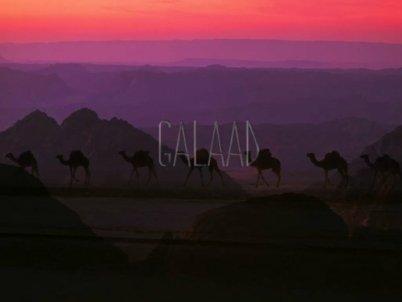 Galaad - Savane