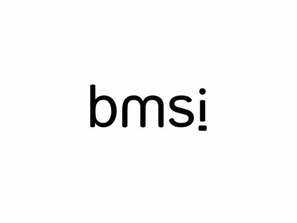 bmsi | Logo & charte graphique - Logo